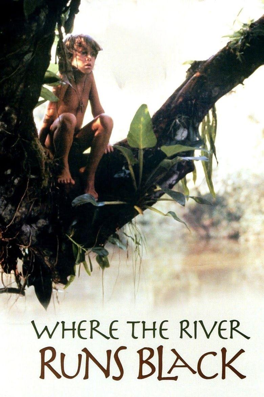 Where the River Runs Black Poster