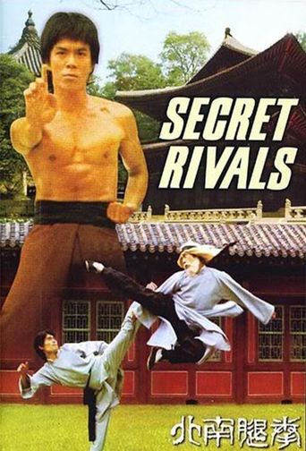 The Secret Rivals Poster