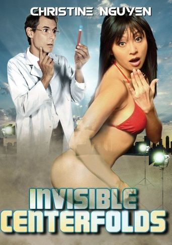 Invisible Centerfolds Poster