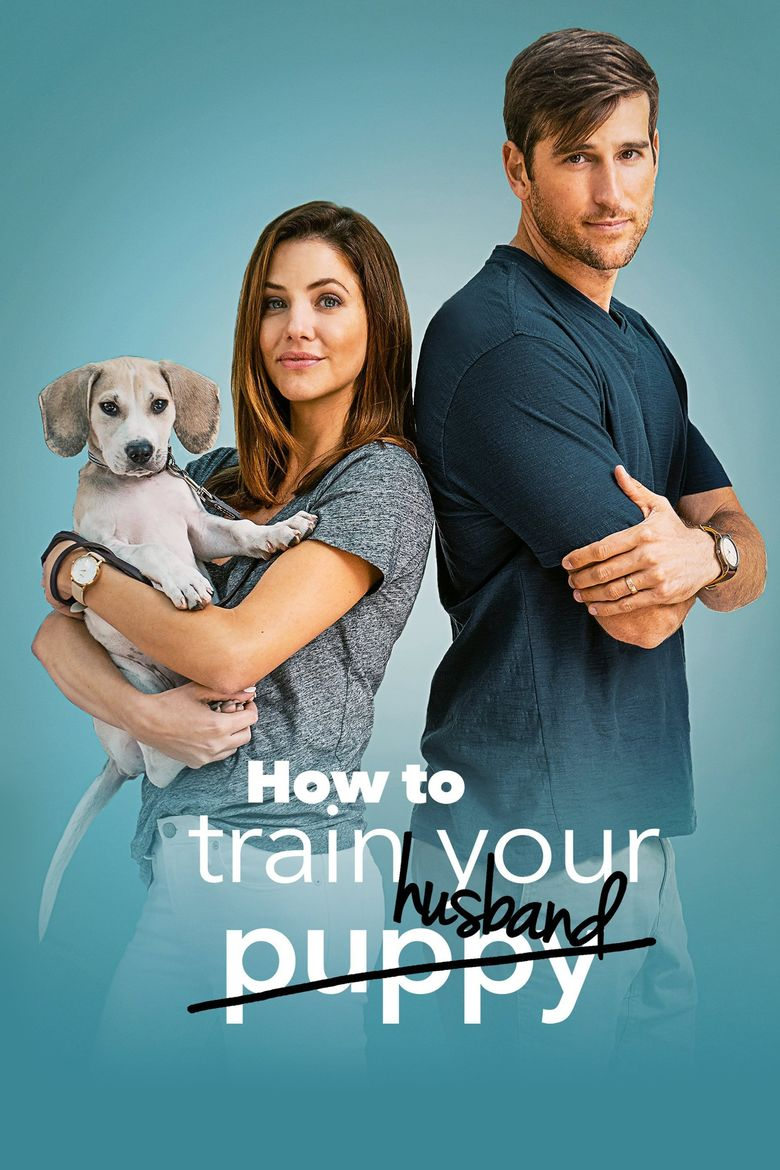 How to Train Your Husband Poster