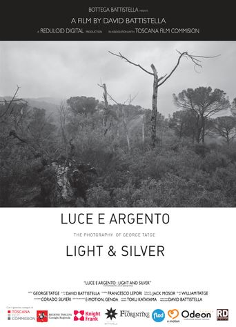 Light and Silver: The Photographic Life of George Tatge Poster