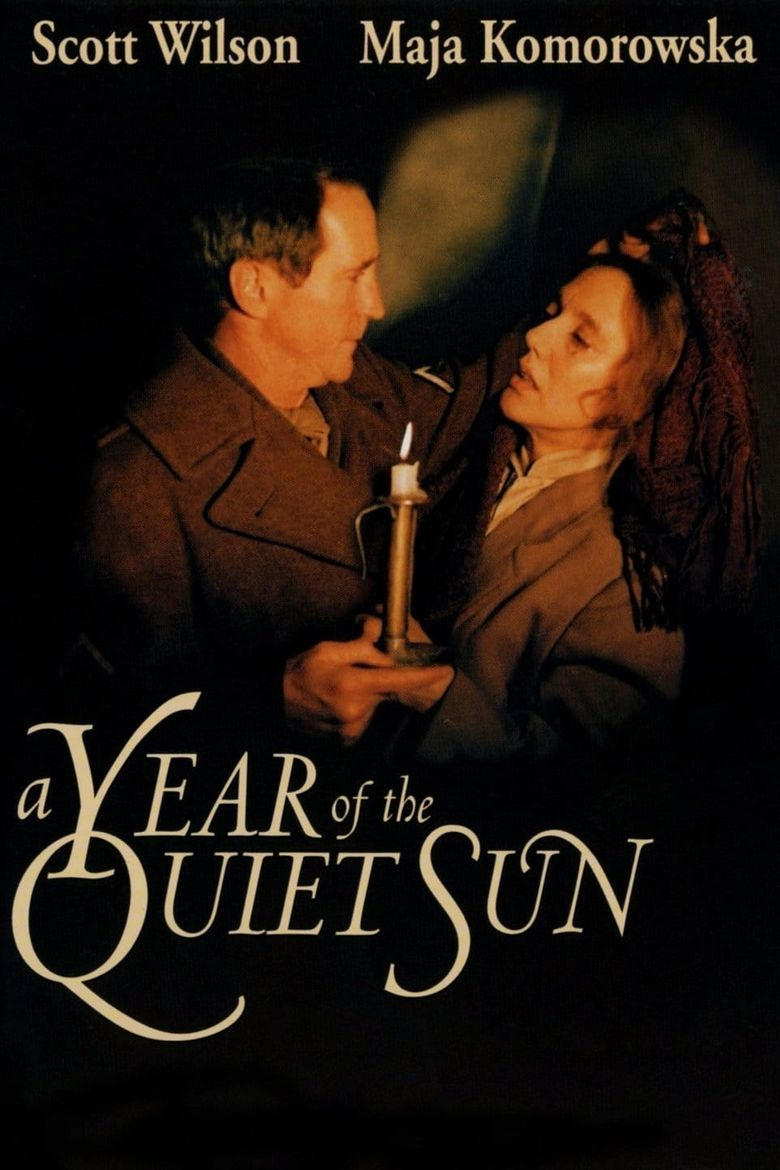 A Year of the Quiet Sun Poster