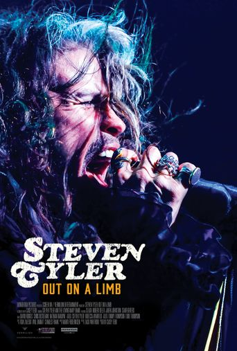 Steven Tyler: Out on a Limb Poster