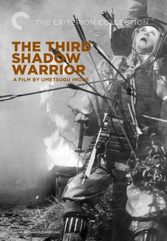 The Third Shadow Warrior Poster