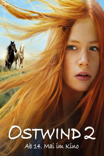 Windstorm 2 Poster
