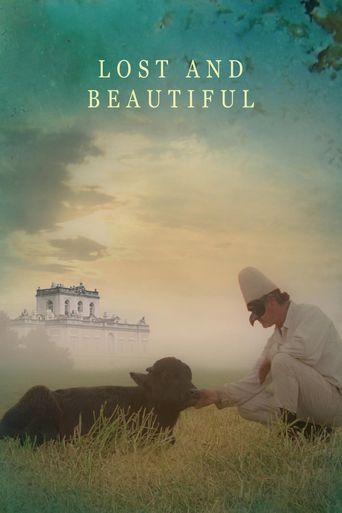 Lost and Beautiful Poster