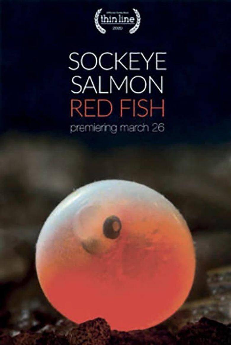 Sockeye Salmon. Red Fish Poster