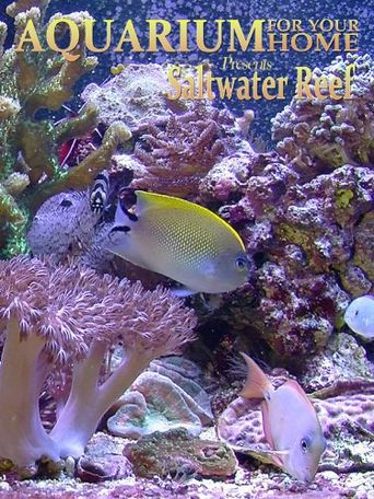 Aquarium for Your Home: Saltwater Reef Poster