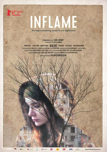 Inflame Poster