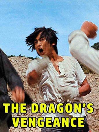 The Dragon's Vengeance Poster