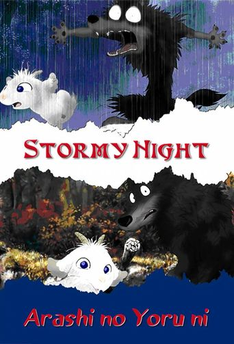 Stormy Night Poster