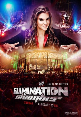 WWE Elimination Chamber 2014 Poster