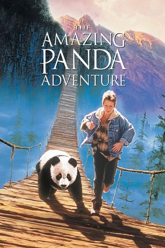 The Amazing Panda Adventure Poster