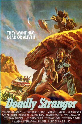 Deadly Stranger Poster