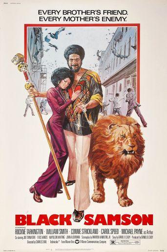 Black Samson Poster