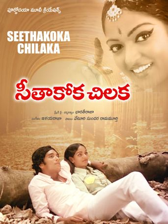Seethakoka Chilaka Poster