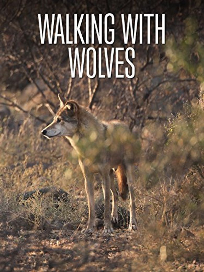 Walking with Wolves Poster