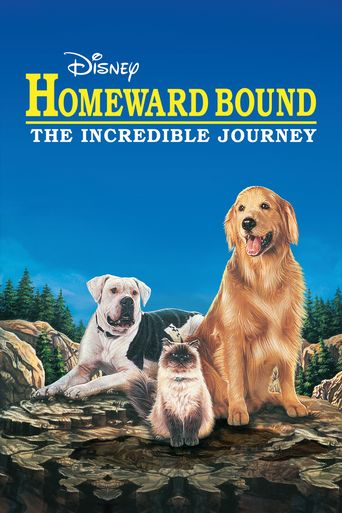 Watch Homeward Bound: The Incredible Journey