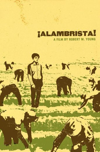 Watch Alambrista!