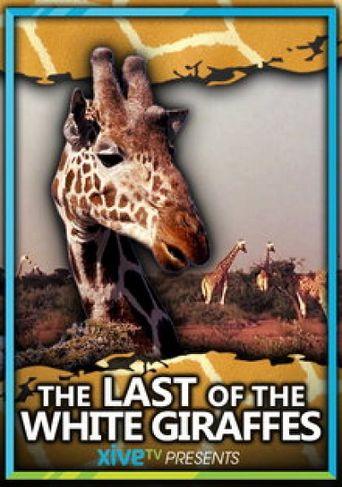 The Last of the White Giraffes Poster