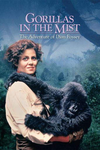 Watch Gorillas in the Mist