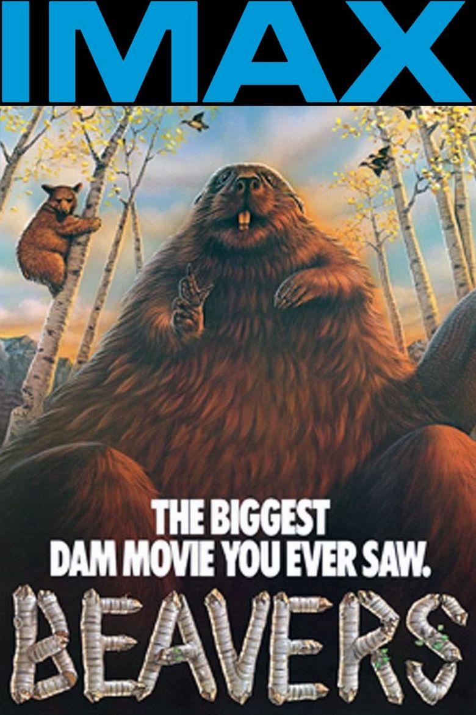 Beavers Poster