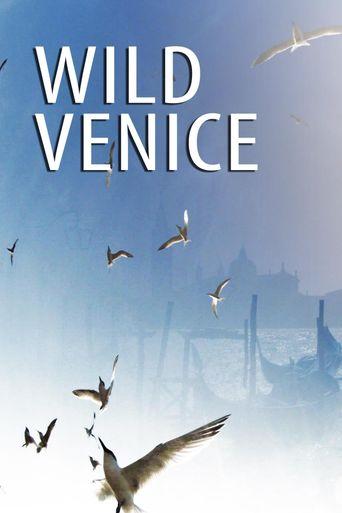 Wild Venice Poster