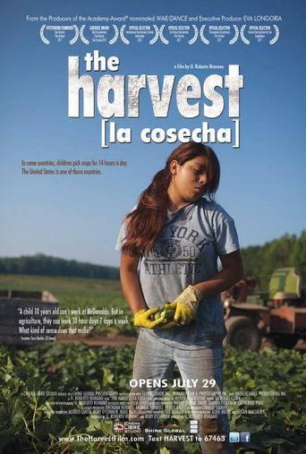 The Harvest (La Cosecha) Poster