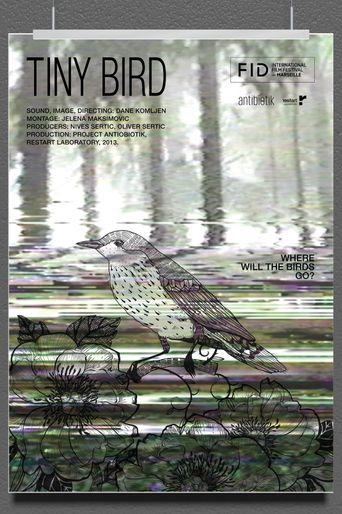 Tiny Bird Poster
