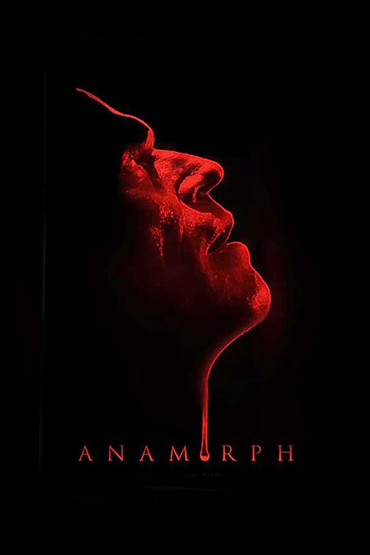Anamorph Poster