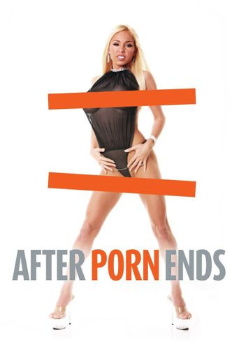 After Porn Ends Poster