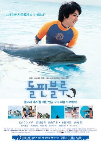 Dolphin Blue Poster