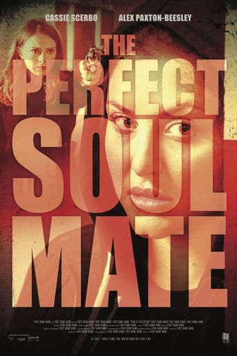 The Perfect Soulmate Poster