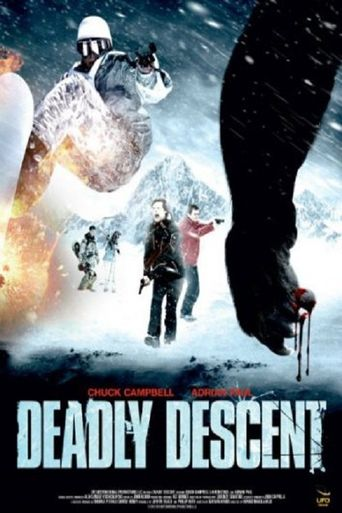 Deadly Descent Poster