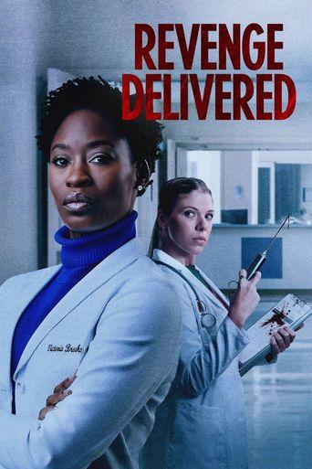 Revenge Delivered Poster