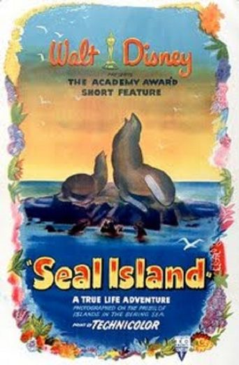 Seal Island Poster