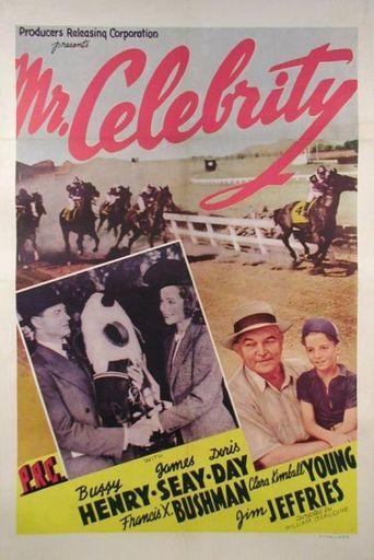 Mr. Celebrity Poster