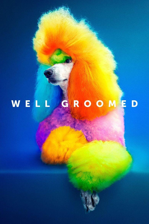 Well Groomed Poster