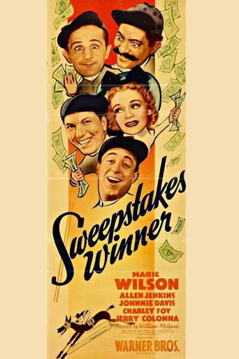 Sweepstakes Winner Poster