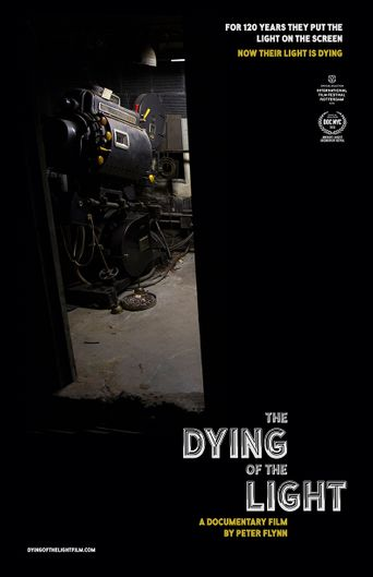 The Dying of the Light Poster