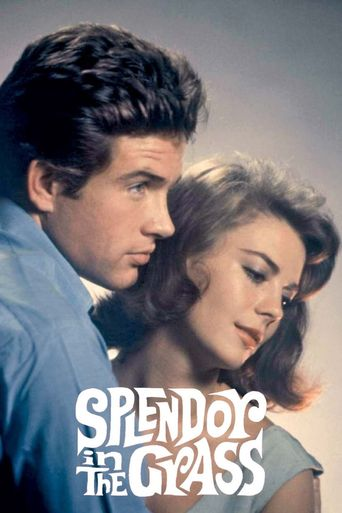 Splendor in the Grass Poster