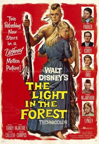 The Light in the Forest Poster
