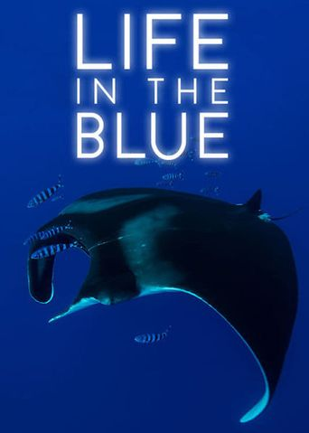 Life in the Blue Poster