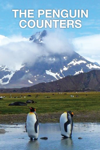 The Penguin Counters Poster