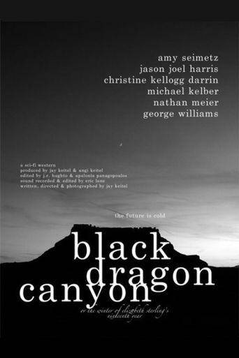 Black Dragon Canyon Poster