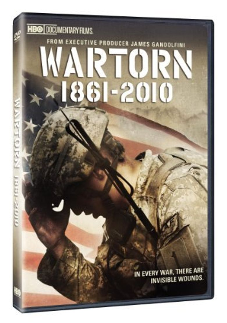 Wartorn: 1861-2010 Poster