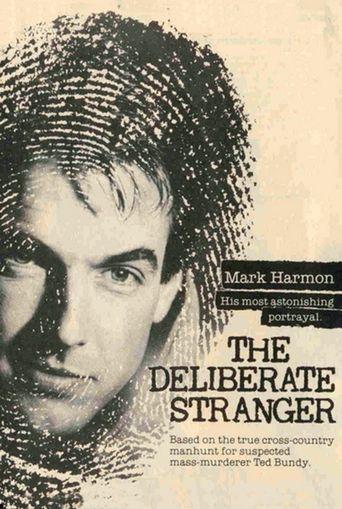 The Deliberate Stranger Poster