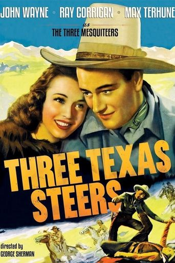 Three Texas Steers Poster