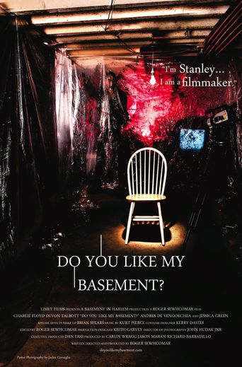 Do You Like My Basement? Poster