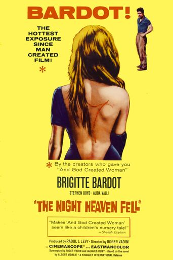 The Night Heaven Fell Poster